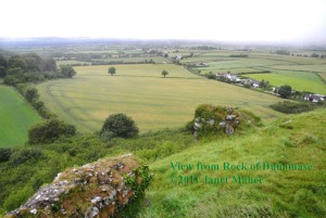 View From Dunamase