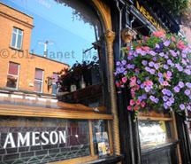 O'Neil's Pub, Dublin, Ireland, 2011