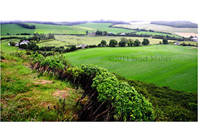 ©2011 Janet Maher, View from Rock of Dunamase, County Laois, Ireland
