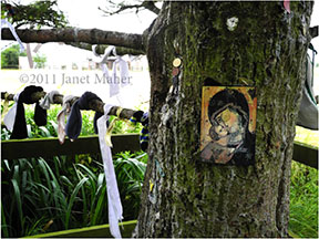 ©2011 Janet Maher, Saint Brigid's Well, Kildare, Ireland