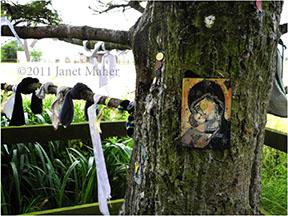 ©2011 Janet Maher, Saint Brigid's Well, Kildare, Ireland
