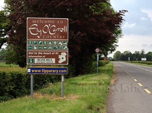 ©2014 Janet Maher, Ely O'Carroll Sign, Dublin Road, Tipperary