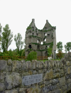 ©2014 Janet Maher, Killduff Castle, Limerick