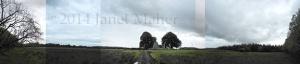 ©2014 Janet Maher, Monaincha, Tipperary