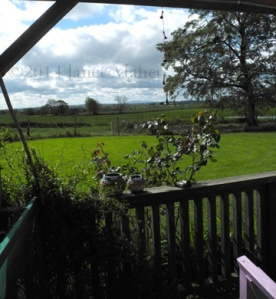©2014 Janet Maher, View from Margaret & Alfie's