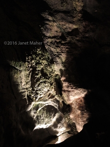 Aillwee Cave ©2016 Janet Maher