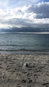 Flaggy Shore, video still ©2016 Janet Maher