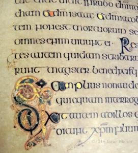 Detail, Book of Kells, Burren College of Art Facsimile © Janet Maher